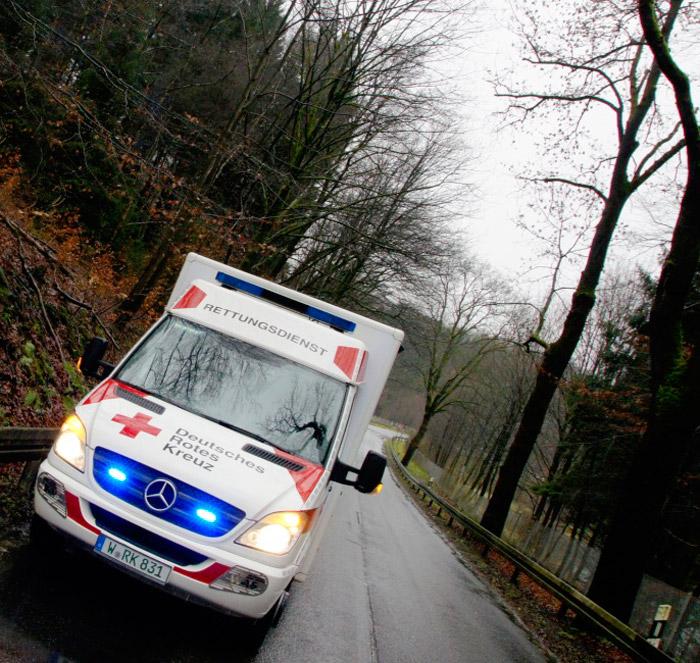 Rettungswagen_Wald
